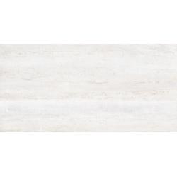 DAYTON WHITE MATT RECT 60x120